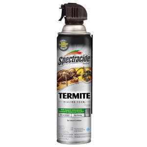 Termite Carpenter Bee Termite Foam Termites